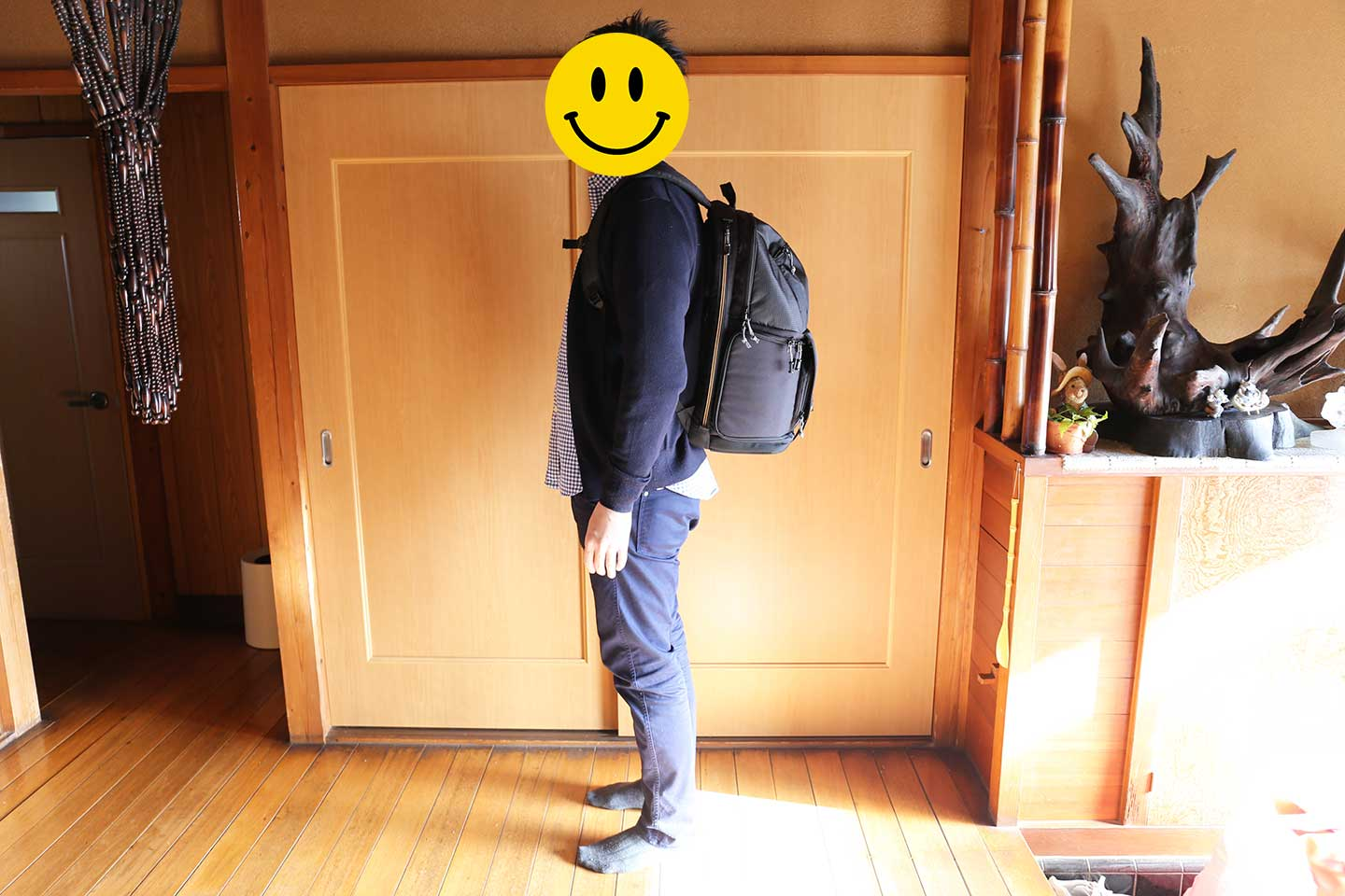 Fastpack BP 250 AW Ⅱ